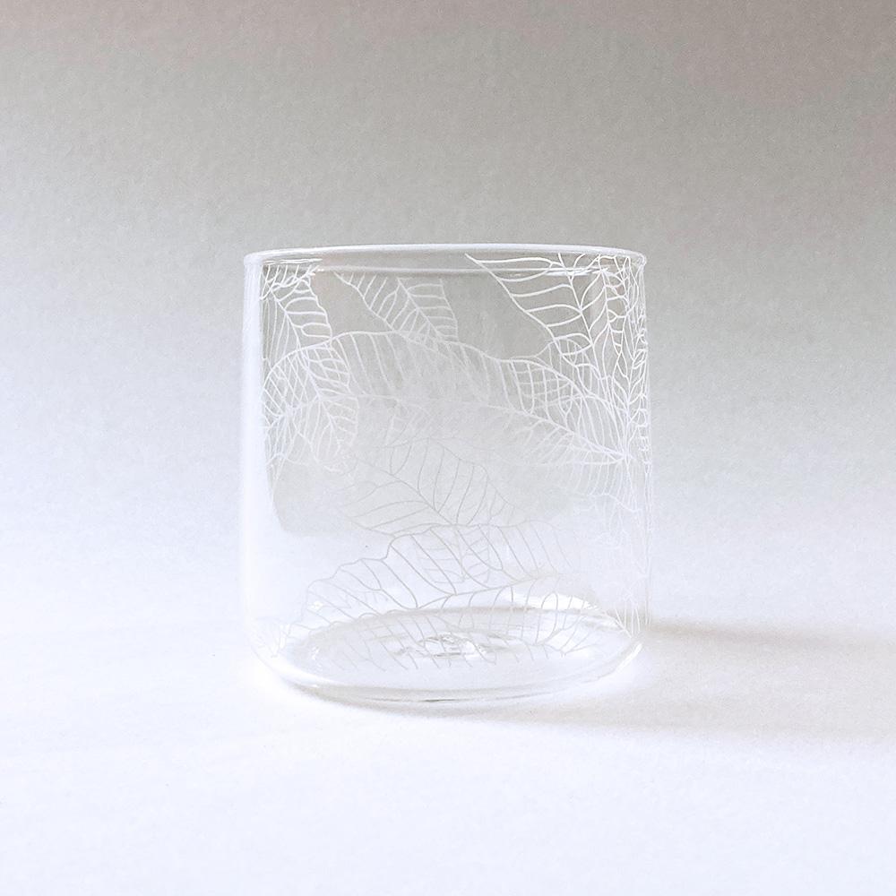 FERN ONLY 蕨飲玻璃杯-矮款-臺灣原始觀音座蓮