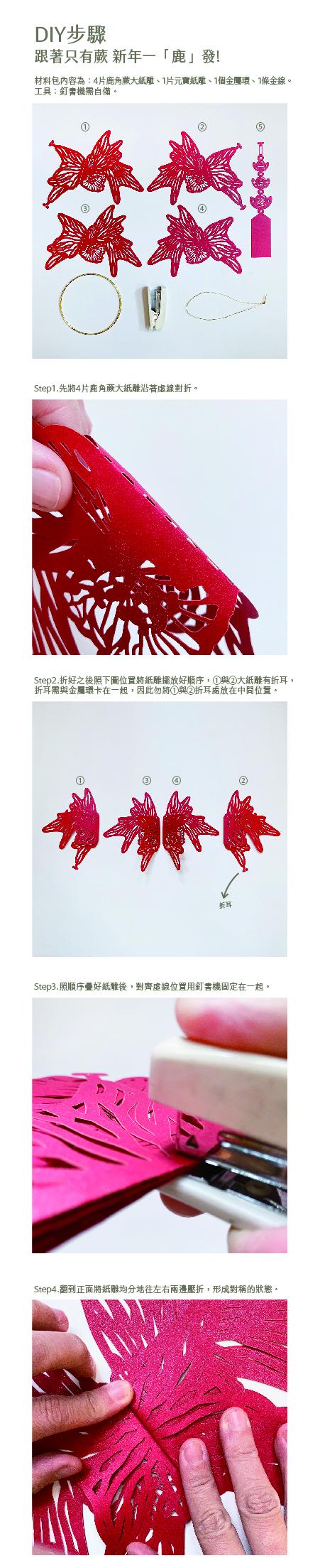 (複製)FERN ONLY|蕨盛木盤-大款-兔腳蕨