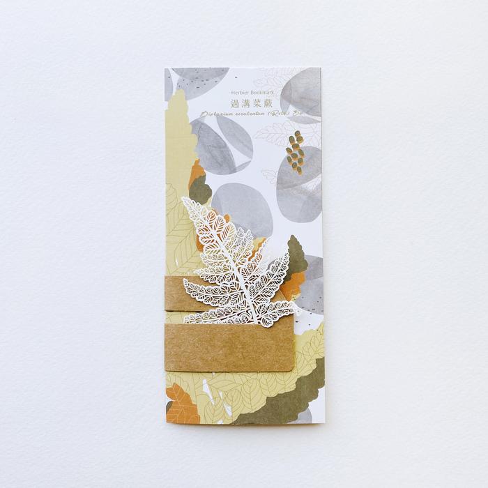 FERN ONLY|蕨類標本紙雕2.0-過溝菜蕨