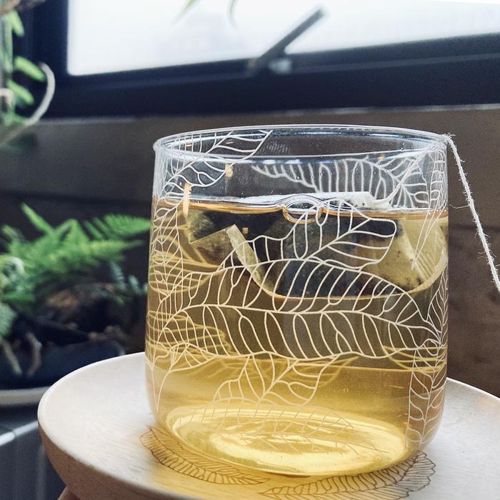 (複製)FERN ONLY 蕨飲玻璃杯-矮款-鐵線蕨