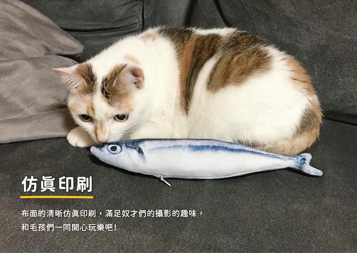 (複製)LINGO   絨毛仿真鮭魚 寵物玩具
