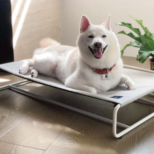 LINGO|寵物吊床 (簡約灰)