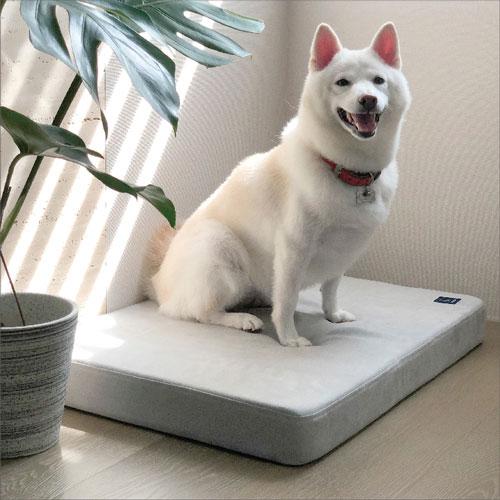 LINGO|寵物床墊 (簡約灰)