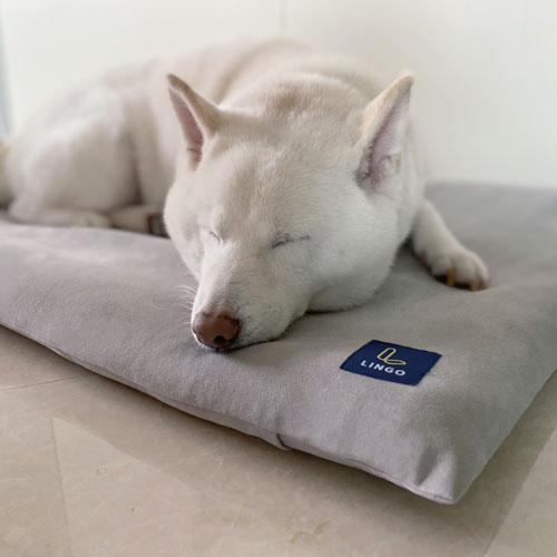 LINGO|3D透氣寵物睡墊 (簡約灰) M