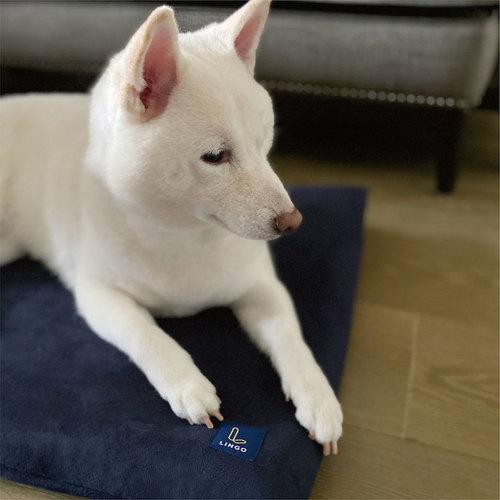 LINGO|3D透氣寵物睡墊 (沉靜藍) L