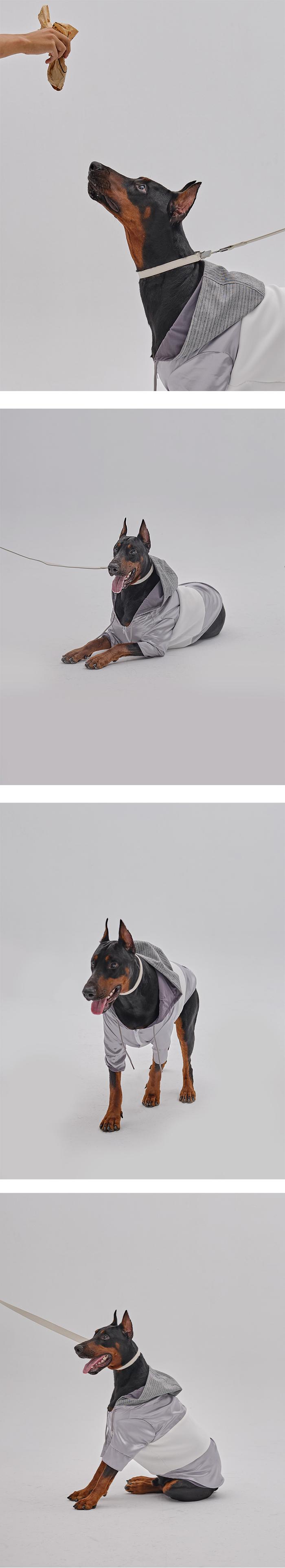 (複製)PEHOM|白綠拼色防水狗狗雨衣