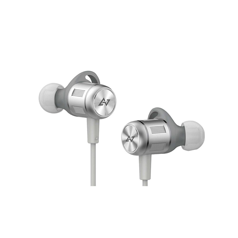 AVIOT WE-BD21d 真無線藍牙耳機-銀
