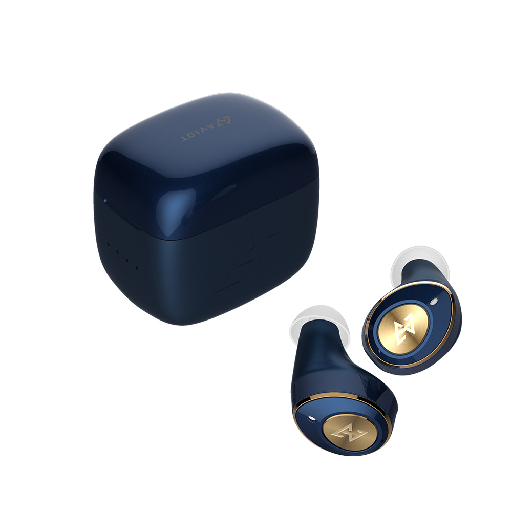 AVIOT|TE-D01m 真無線藍牙耳機-藍