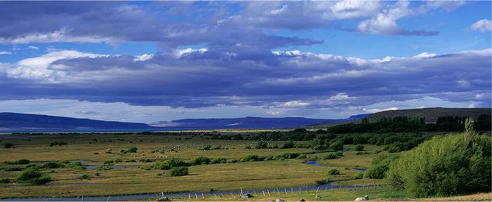 Del Sur|阿根廷純手工植鞣天然牛皮托特包