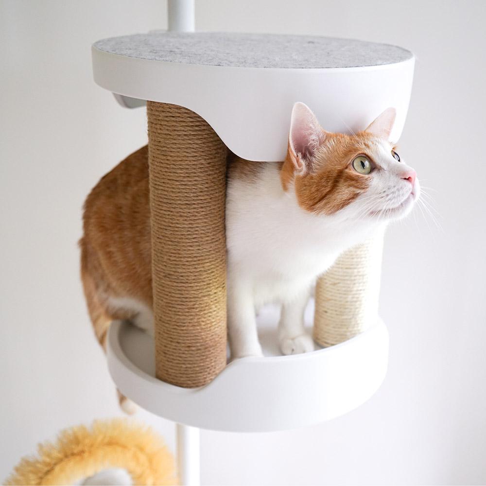 Hug|抱抱貓跳台 - 貓抓柱