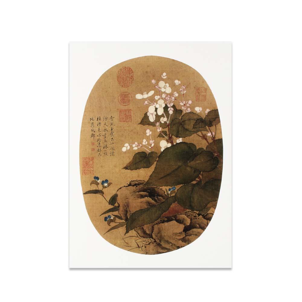 故宮精品 | 圖卡-畫花卉秋海棠淡竹葉