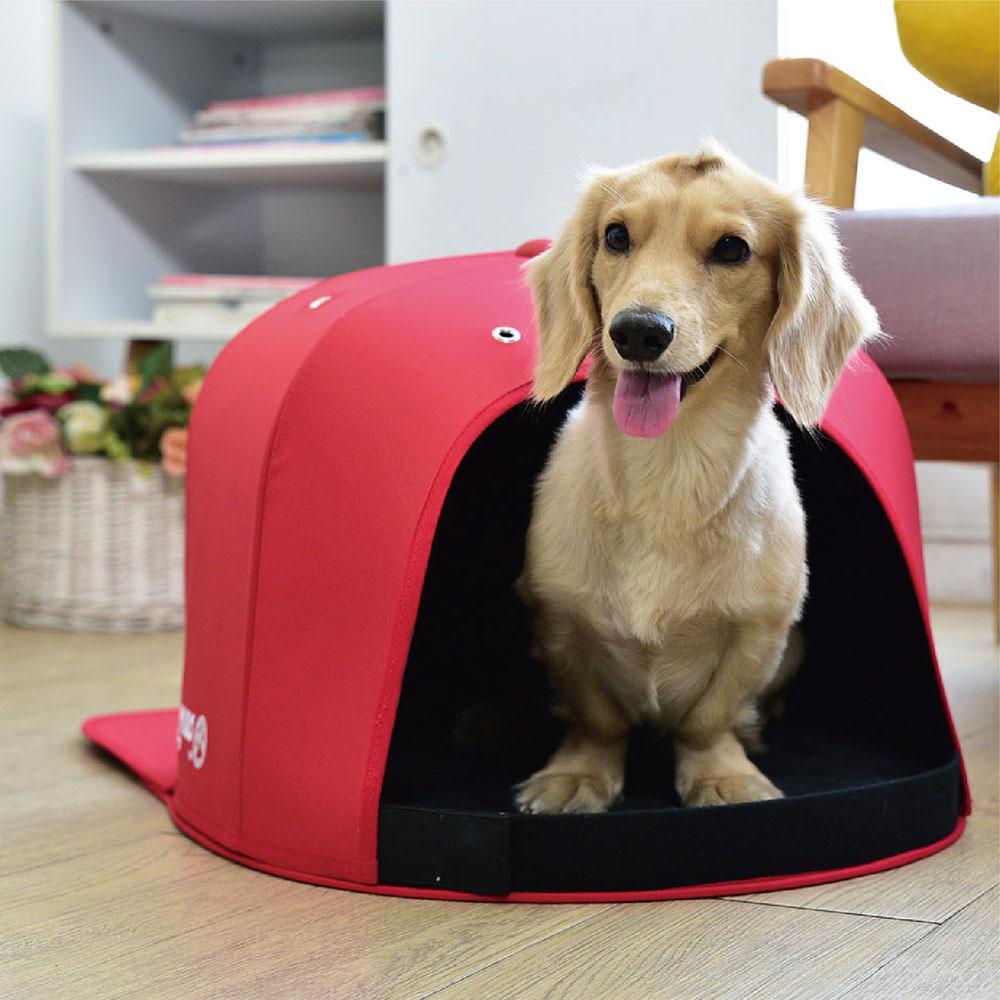 BIGGER|瘋狂爪子球帽窩(帽舌可拆)-狗狗款S