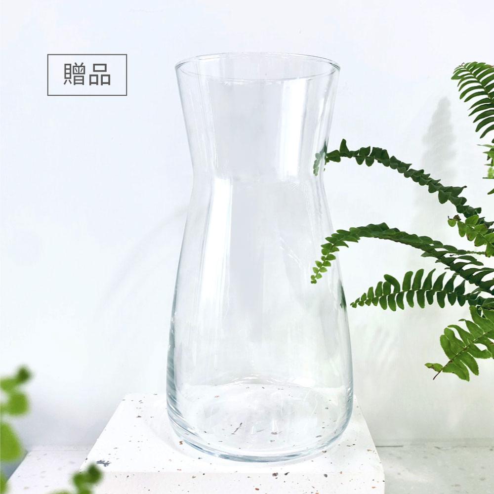 FLYTTA|SKUZEE鮮榨蓋 - 果茶調飲組(珊瑚紅)(贈1L玻璃瓶)