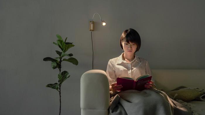 退役木橫擔|Whims E010 LED床頭閱讀壁燈 -深色