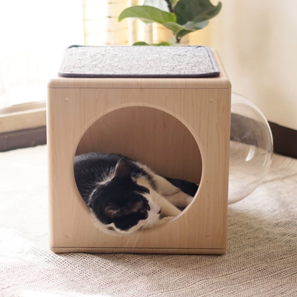 拍拍|跳箱窩專用貓抓布