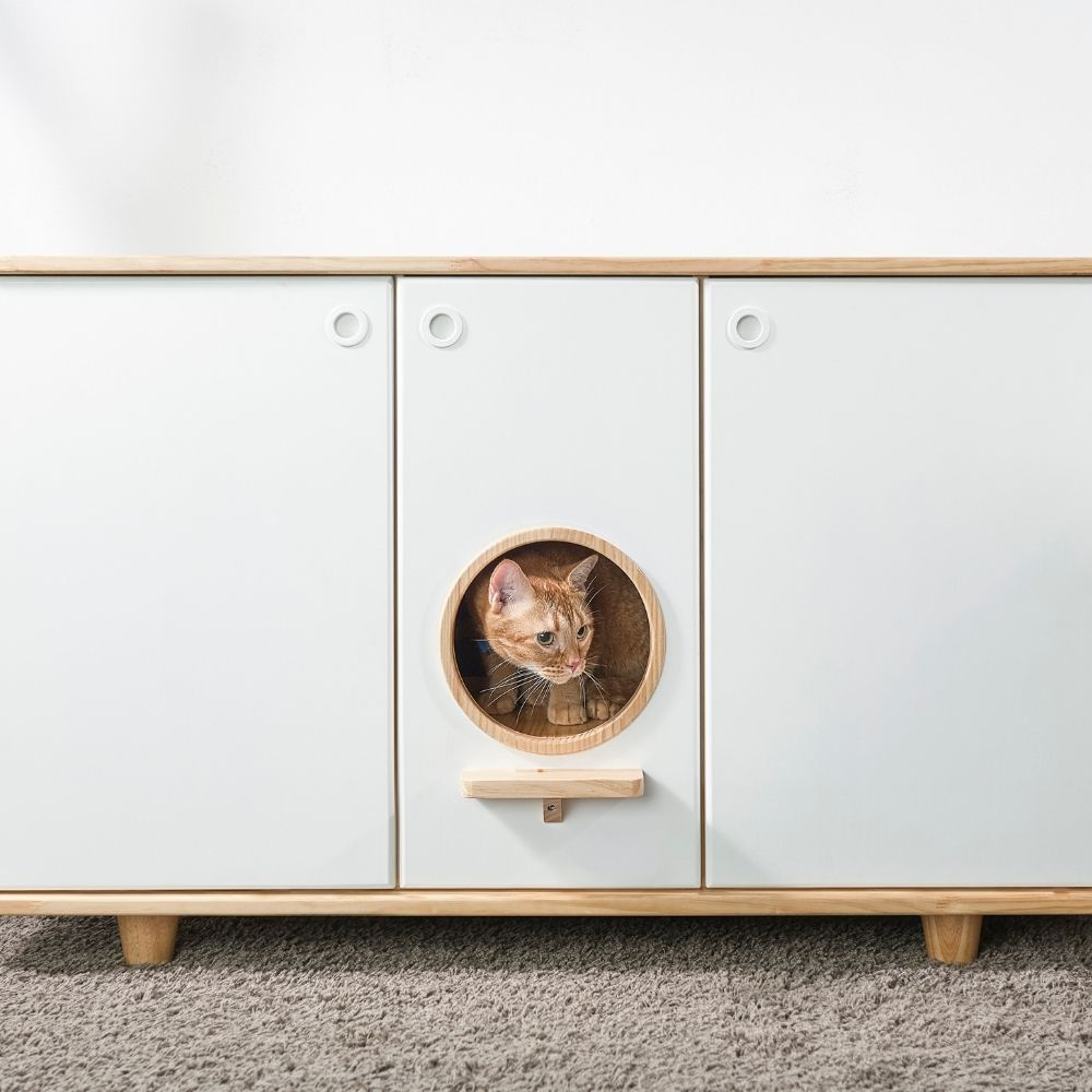 拍拍 貓砂櫃-雙盆款 (需自行組裝)