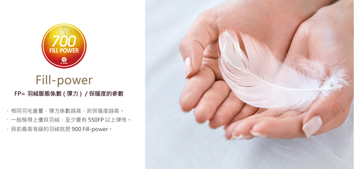 (複製)BBL Premium CN9-JIS80/20內立羽絨冬被-沙金(加大)
